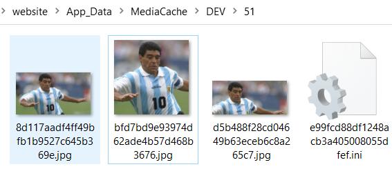 The Sitecore media cache